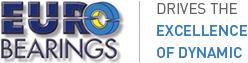 Programa gestión Erp EBS Eurobearings