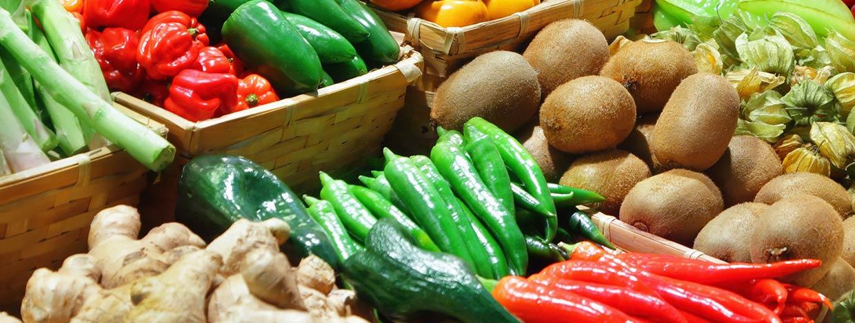 Programa de facturación Tiendas de alimentación Erp Balanzas Web Nube