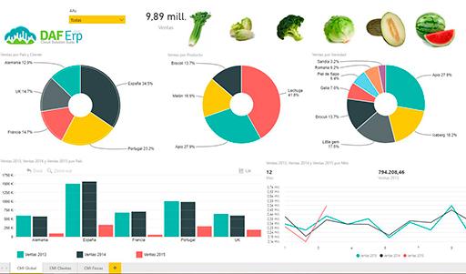 Herramienta de gestión de datos para empresas BI